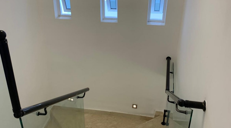 Gallery 4
